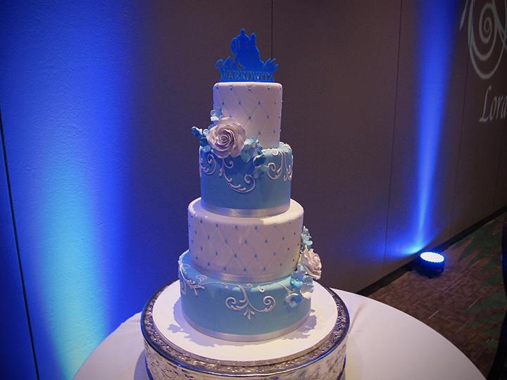 Disney World Shades of Green Wedding Cake on display